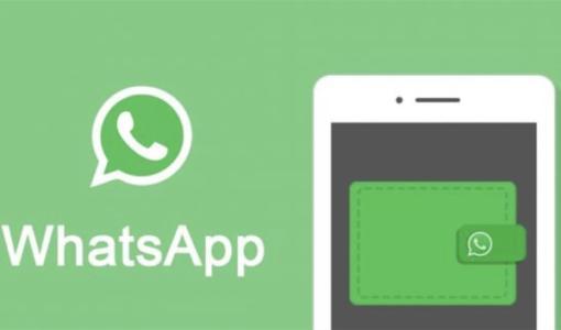 whatsapp过滤筛选器